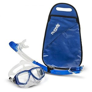 ProDive Premium Dry Top Snorkel Set - Impact Resistant Tempered Glass Diving Mask