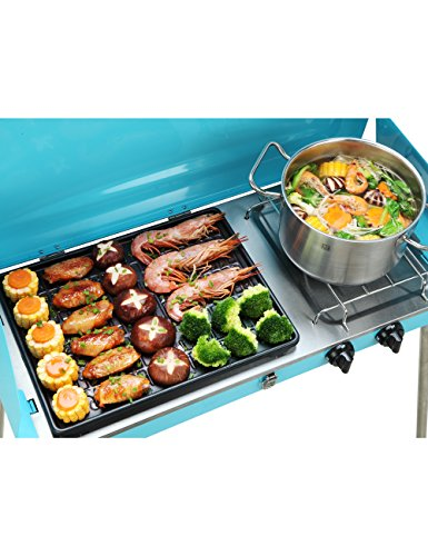 7efa0a6e1e8f95 JIMI Outdoor Dual-Burner Camping Grill/Stove Portable Gas Grill Tailgating  Cooker with Hose. et-loader