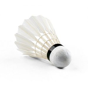 Senston Badminton Shuttlecocks A30(High Stability and Durability)