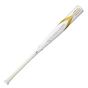 Easton 2018 Ghost X -3 Adult Baseball Bat (BBCOR)