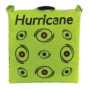 Hurricane Bag Archery Target Taking the Archery World by Storm