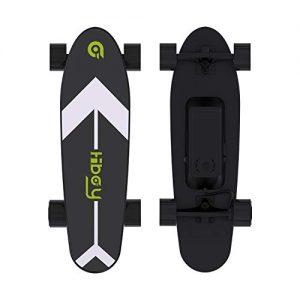 Electric Skateboard with Wireless Remote 350W Motor
