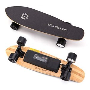 "Blitzart Mini Flash 28"" Electric Skateboard Electronic"