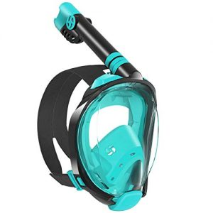 W WSTOO Snorkel Mask with Latest Dry Top Breathing System