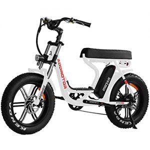 Addmotor MOTAN Electric Bike, 750W E Bike