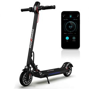 Folding Electric Scooter for Adults 300W Brushless Motor