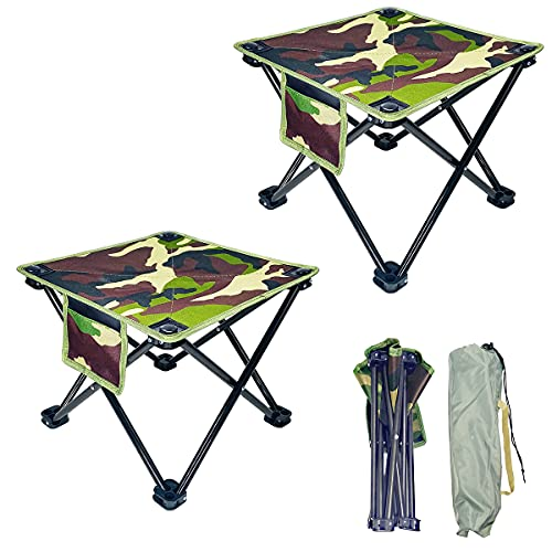Portable Chair Folding Camping Stool with Carry Bag