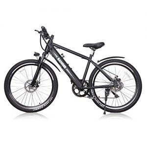 Electric Bike for Adults with 300W Motor and 36V