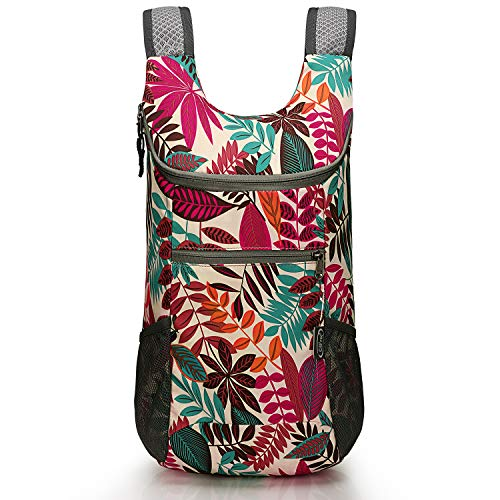 Foldable Lightweight Packable Backpack Hiking
