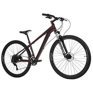 Royce Union RHT Lightweight Aluminum Mountain Bike