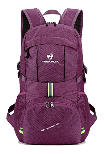 Lightweight Foldable Camping Hiking Backpack