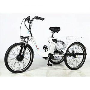 Electric Bike Adult Tricycle 3 Wheel
