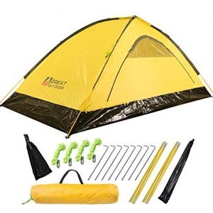Ultralight 2 Person Camping Tent with Stakes and Poles