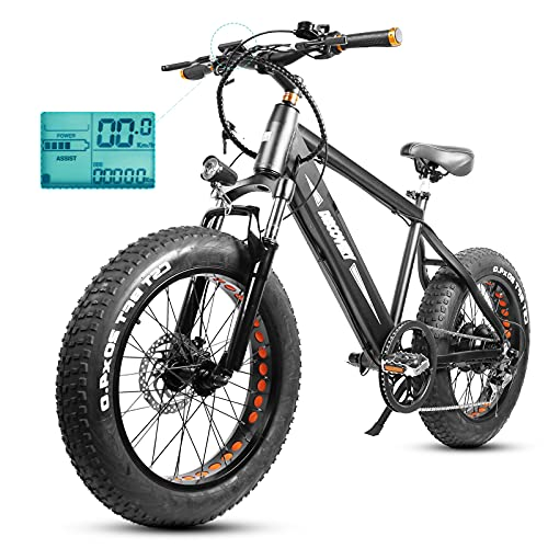 Fat Tire Electric Bike for Teens Adults