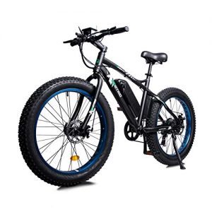 Powerful Electric Bicycle Snow Ebike Throttle & Pedal Assist