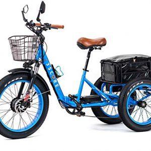 3SCORE Electric Fat Trike 750W Motor