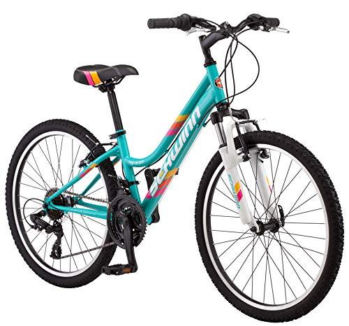 Schwinn High Timber Youth/Adult Mountain Bike