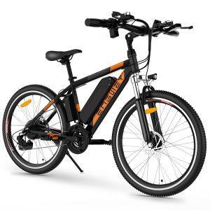 Adult Electric Mountain Bike 250W