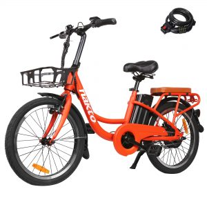 BRIGHT GG NAKTO Electric Bike Adult