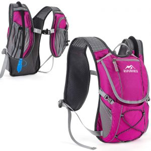 Lightweight Backpack with 2L Water Bladder