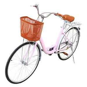 Cruiser Bike Classic Iron Frame Retro Bicycle